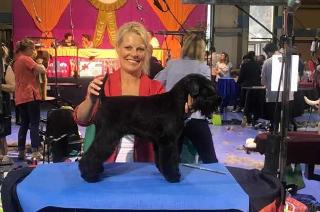 Susan wint RES BEST in Show Belgie